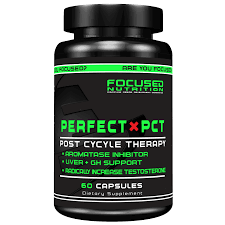 Focused Nutrition Perfect PCT 60 Kapseln