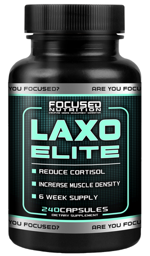 Focused Nutrition Laxo Elite 240 Kapseln - 20mg Laxogenin pro cap